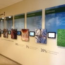 Corporate Wall Images