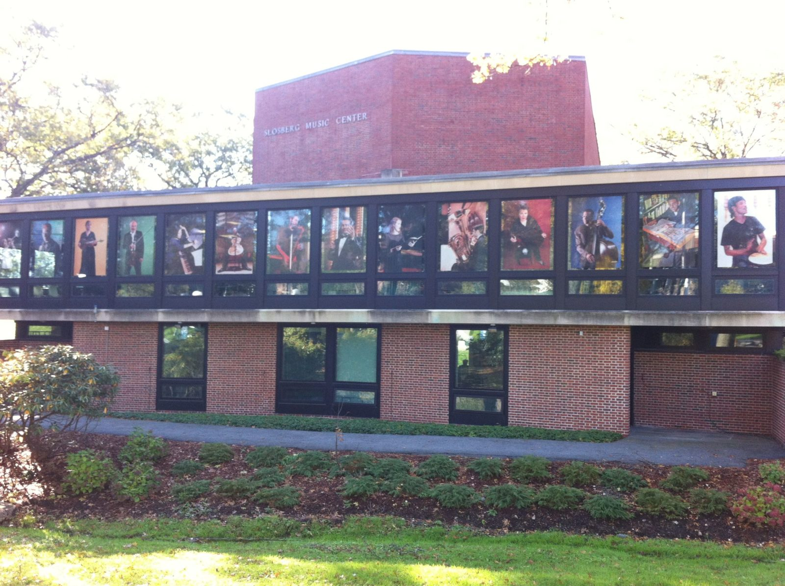 brandeis college window cling graphics